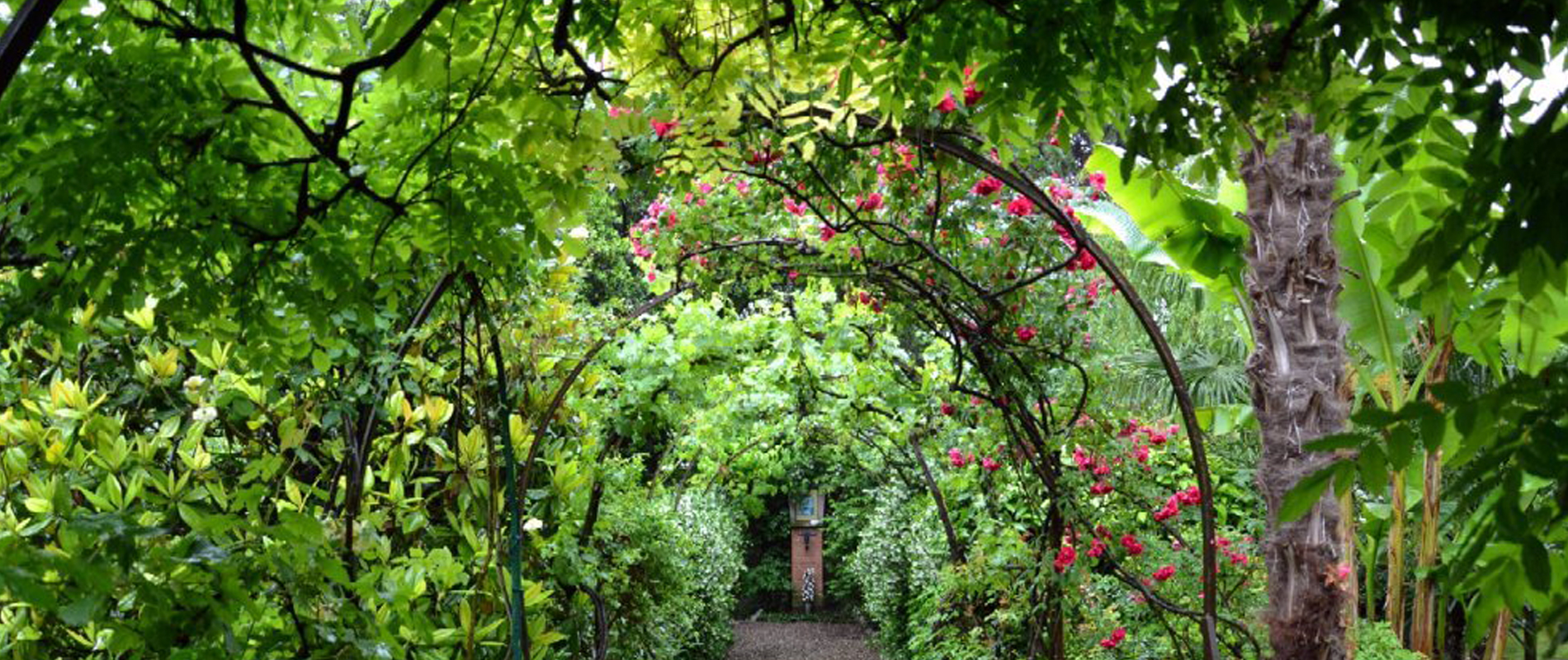 Giardini e Scaloni Bologna